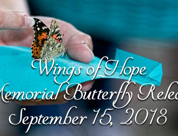 Wings of Hope Memorial Butterfly Release River Valley Ovarian Cancer Alliance Fort Smith ARkansas